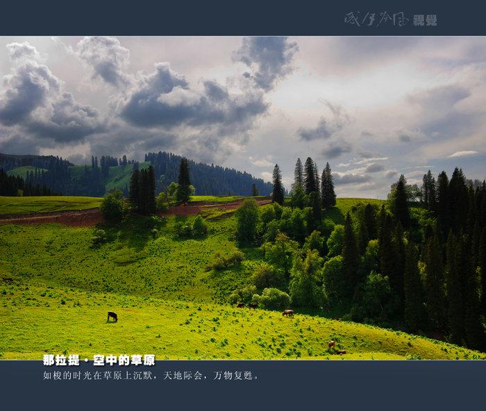 空中的草原